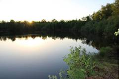 Naturschutzgebiet Tatemeer